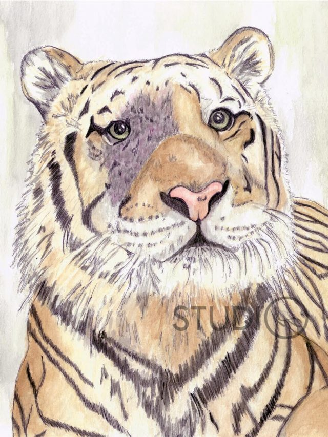 Mike the Tiger Painting